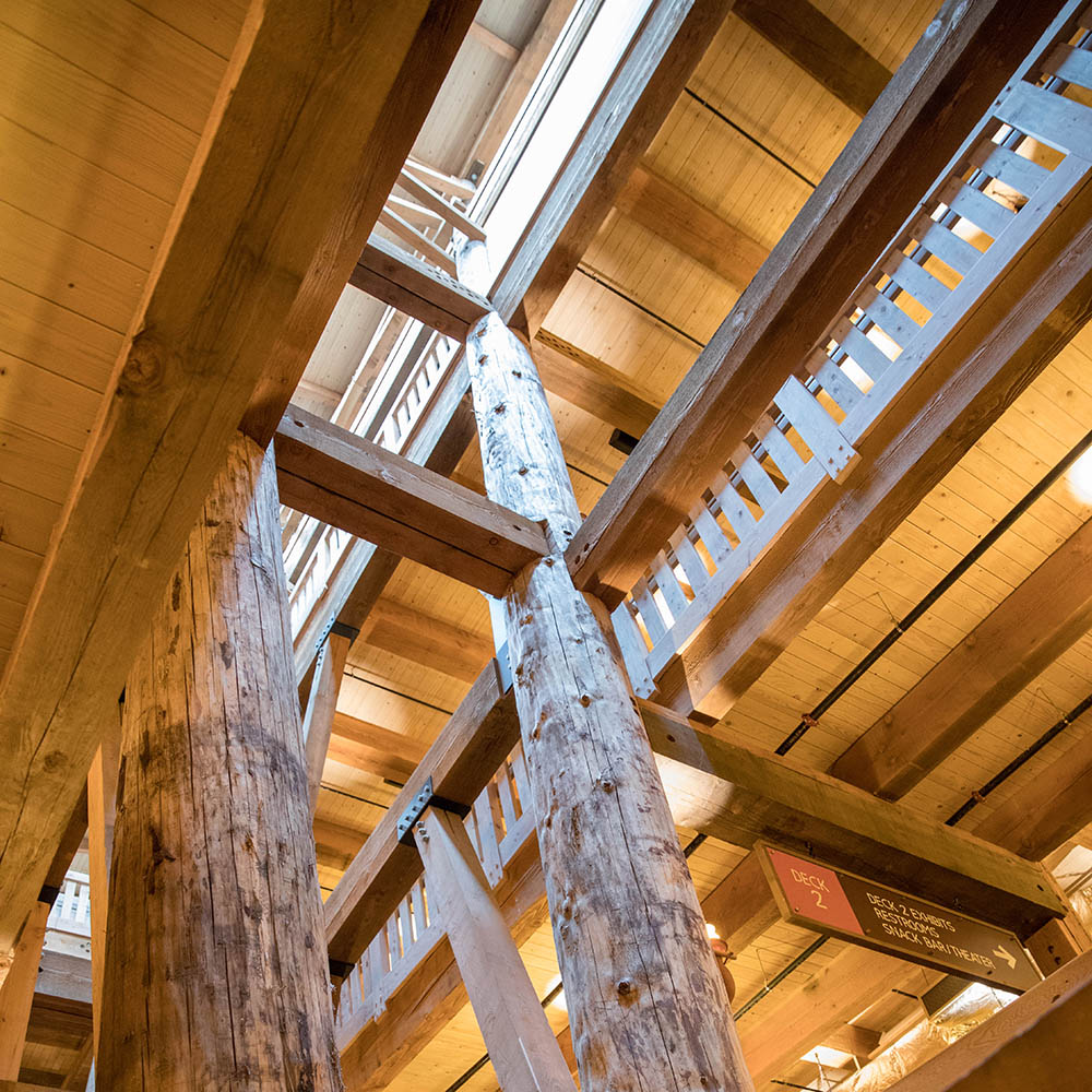 Ark Encounter Timber