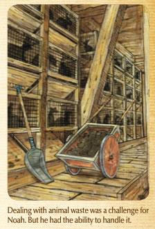 Ark Deck