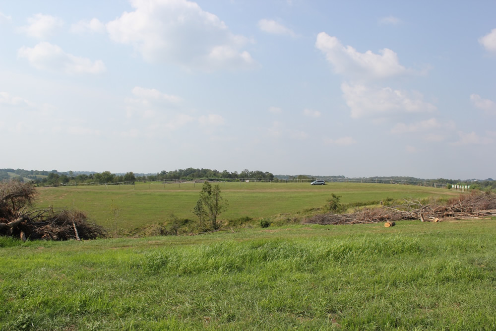 Wide shot of future Ark site taken in 2013. This is very close to what the hill looked like until last week.