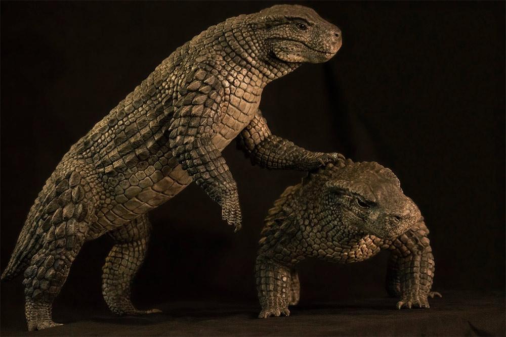 Simosuchus