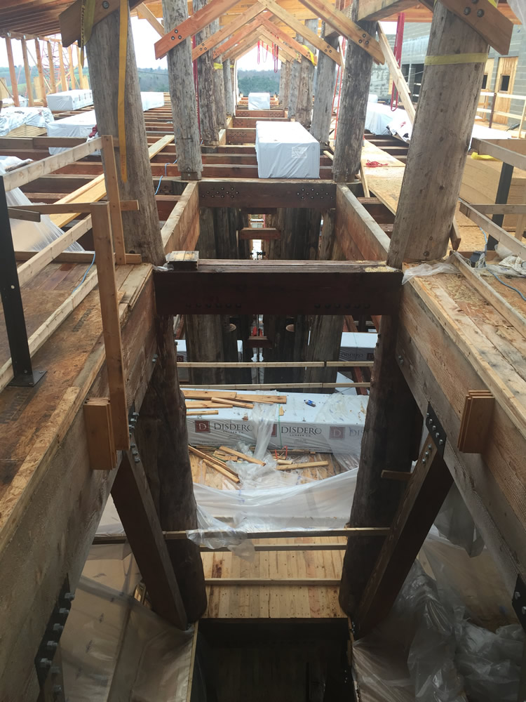 Columns in Noah's Ark