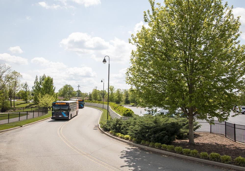 Bus Arrival