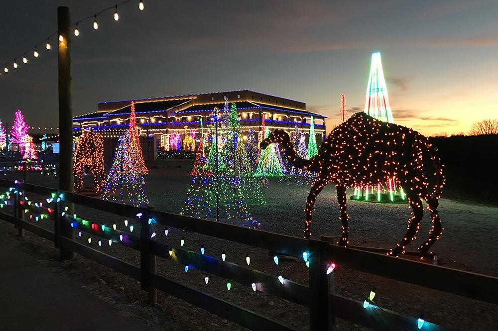Zoo Walkway at ChristmasTime