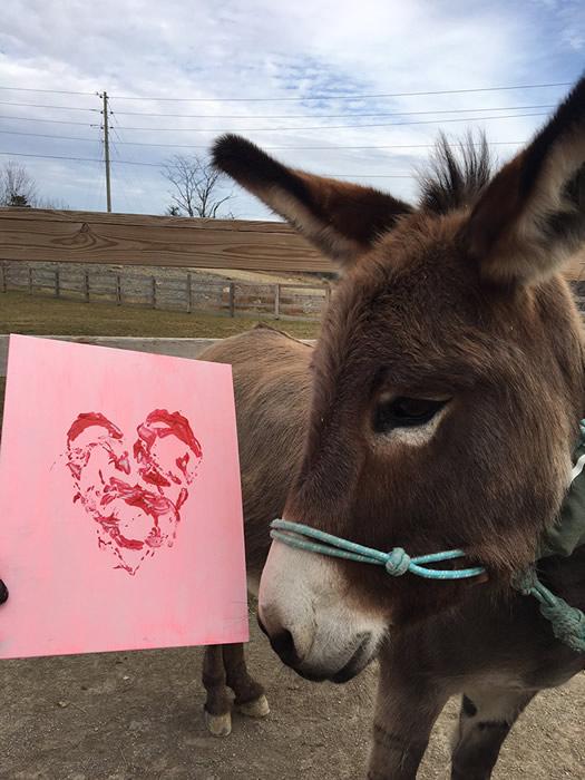 Donkey Hoof Heart