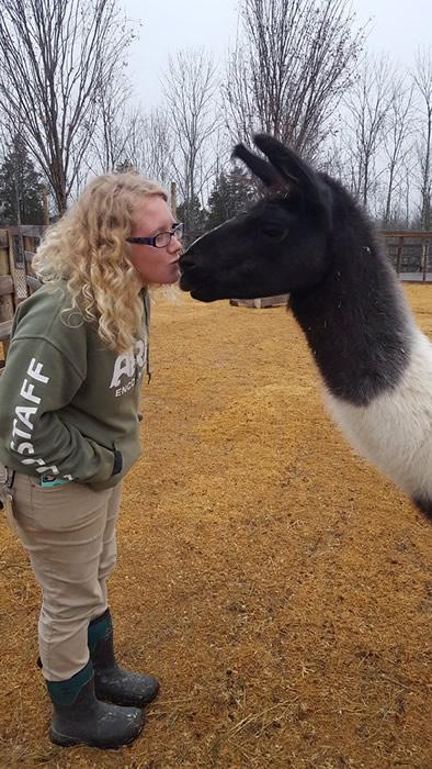Llama Kisses