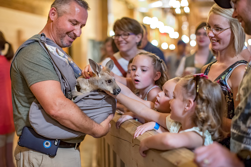 Animal Encounter Inside the Ark Encounter