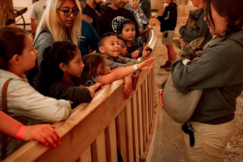 Día Latino at the Ark Encounter