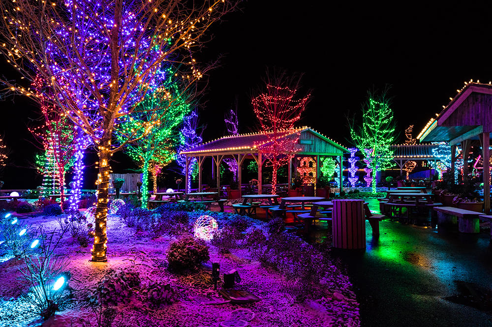 ChristmasTime at the Ark Encounter Lights