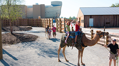 Spend Your Break at the Ark Encounter