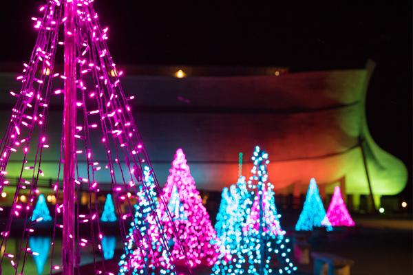 Ark Christmas Light