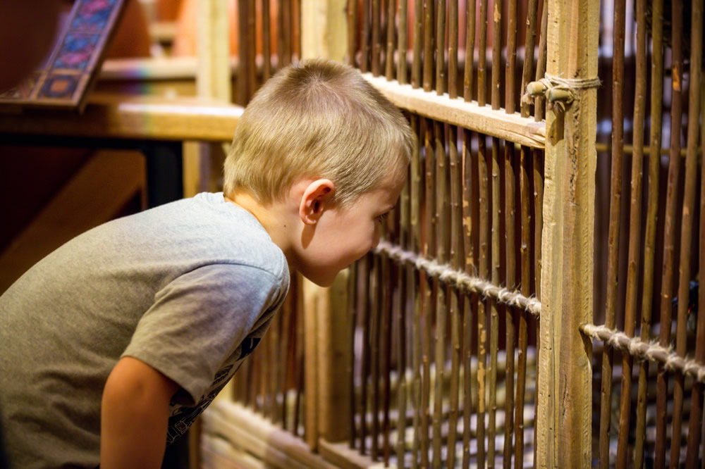 Boy Near Cage